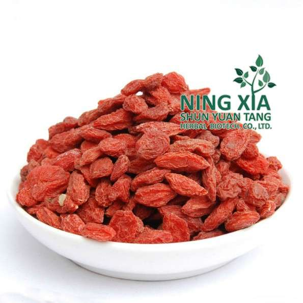 dried goji berry dried fruits supplier from China