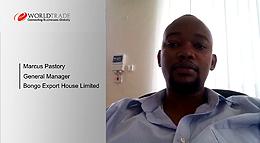 Bongo Export House Ltd