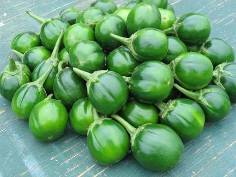 African Garden Egg( Solanum Melongena)