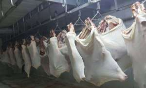 (Halal) Fresh Chilled & Frozen Cow Meat